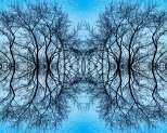 """Joey Marchetti won a Honorable Mention in Digital Art for """"Web in the Sky."""""""