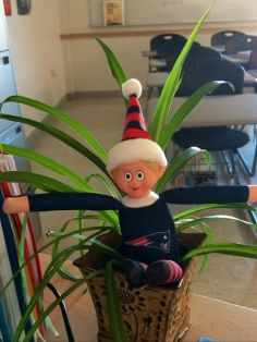 Cluster the Elf in Mrs. Phelp's room.